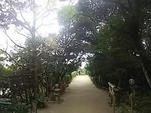 志賀海神社から