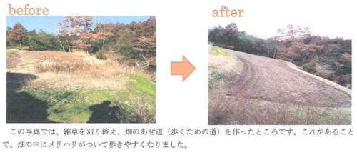 出典:http://www.goldribbon.jp/pdf/art/2013_ace-noen.pdf