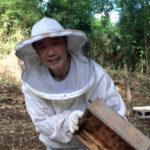 羽田野さん【豊後大野市の鳥屋(とや)地区】の蜂蜜の購入方法は?