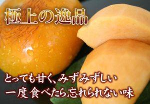 シンデレラ柿