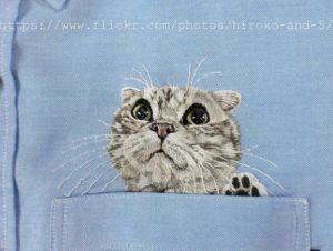 猫シャツスコテッシュ