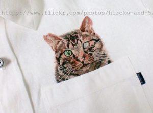 猫シャツさくらねこ
