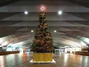 大桟橋埠頭ビルクリスマスイルミネーション